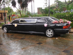 Nigeria Wedding Limo